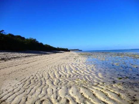 vipingo beach3
