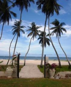 beach entrance portrait