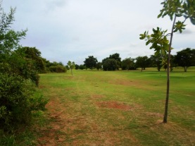 course view 3