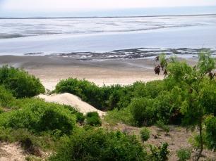 Raised beach plot