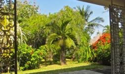 house-3-garden-view