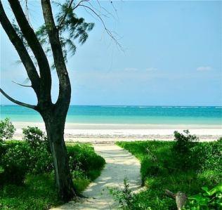 path to beachfront