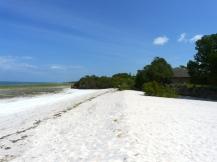 beach cove2