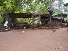 fowl house