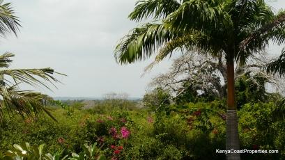view of shimba hills