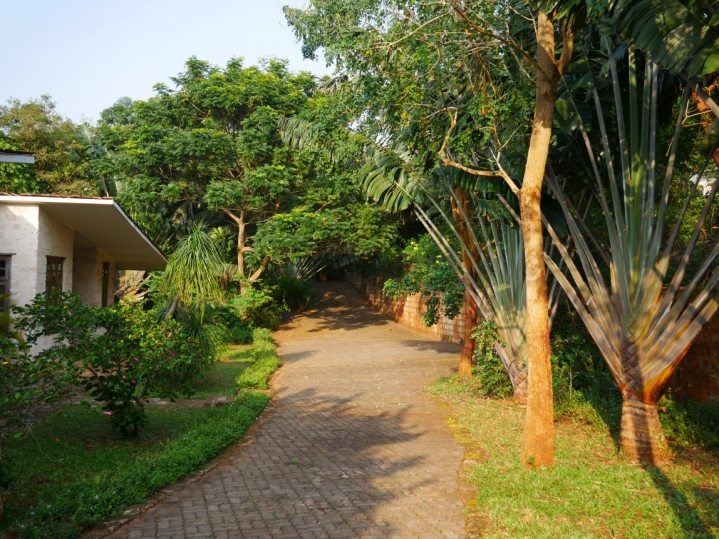 driveway in