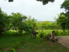 garden to view