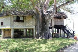Baobab and accom