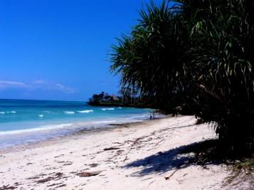 beach sea south