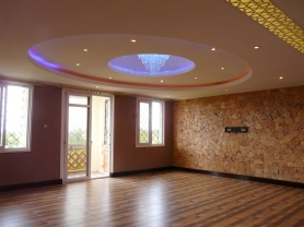 Sitting room and ceiling