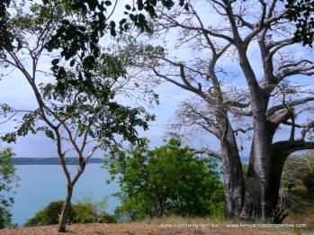 Kilifi Creek View 7