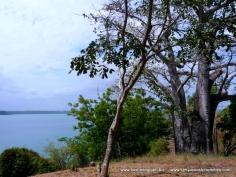 Kilifi Creek view6