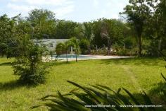 garden-to-pool