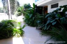 lush-landscaping