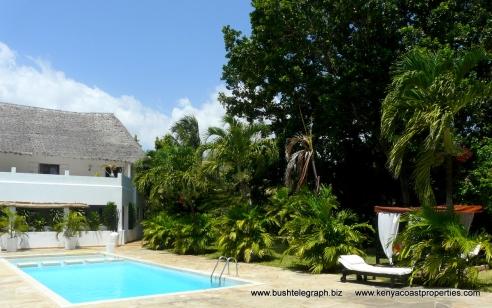 pool-hse-trees