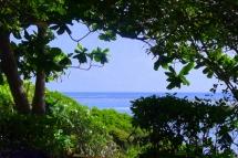 garden-to-sea