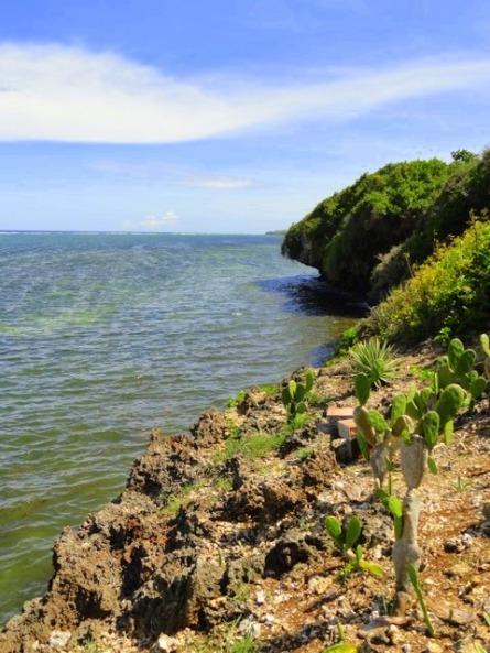 vipingo-kuruwitu-view-to-south