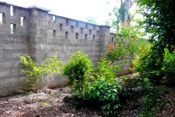 walled-plot