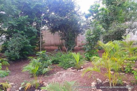 garden to wall