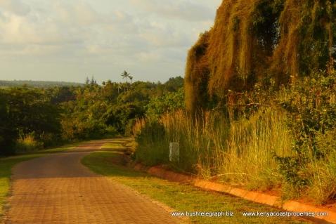 plot road