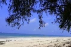 Diani Beach 22