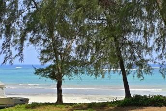 Diani Beach 23