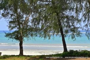 Diani Beach 4