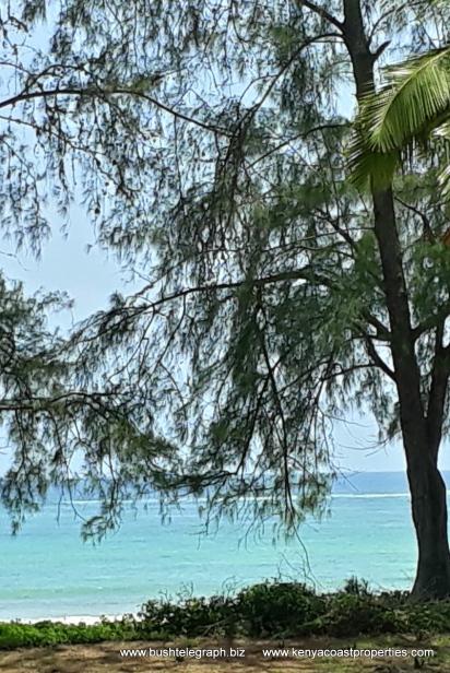 Diani Beach 5