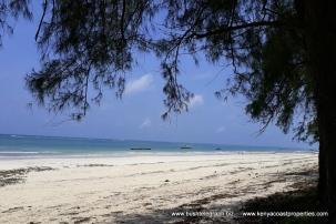 Diani Beach 6