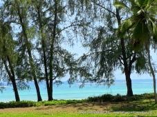Diani Beach 9