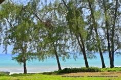 Diani Beach2