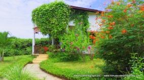 house path2