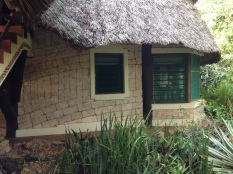 Fish eagle suite from outside