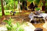 waterfall to kichen