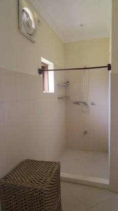 bathroom shower master