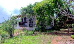 Cottage s