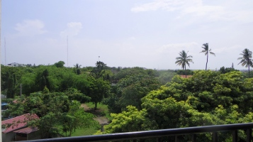 view from back terrace