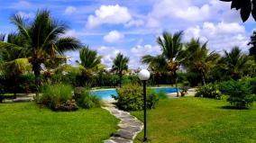 pool garden1