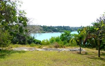 creek view2