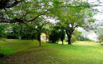 plot to cottage