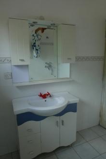 apt bathroom1