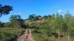 farmhouse on hill4