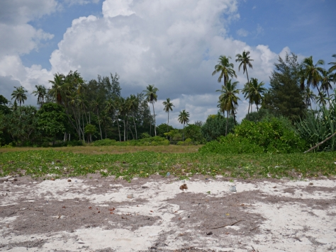 7 acre from beach