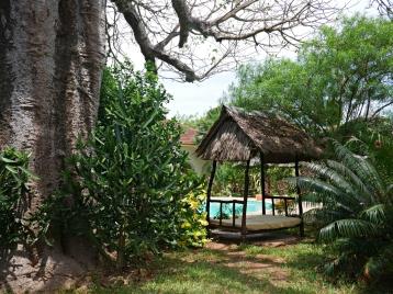 baobabbedtopool
