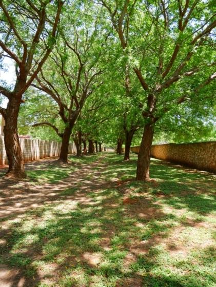 driveway to plot2