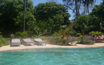 pool sunbeds
