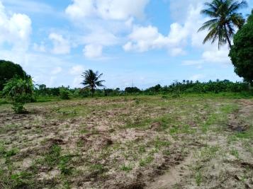 land11
