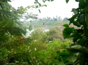 Mtwapa plot creek view