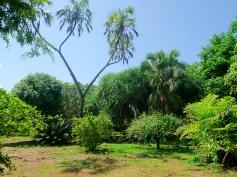 gardens5