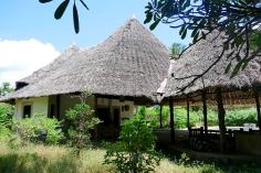 baobab to house